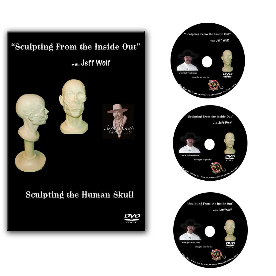 How to Sculpt the Human Skull DVD Set