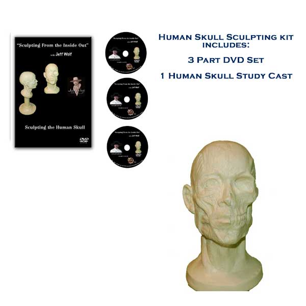 How to Sculpt the Human Skull - Sculpting Kit